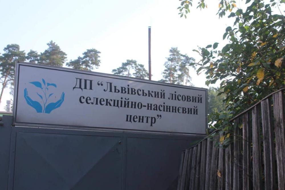 Олександр Ганущин ознайомив голову Держлісагенства з діяльністю Львівського лісового селекційно-насіннєвого центру